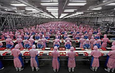 Foxconn Production Line
